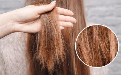 Cheveux ternes, cassants ou sans volume : quelques astuces