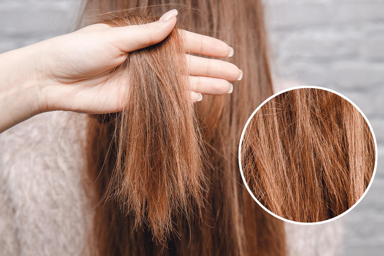 cheveux ternes